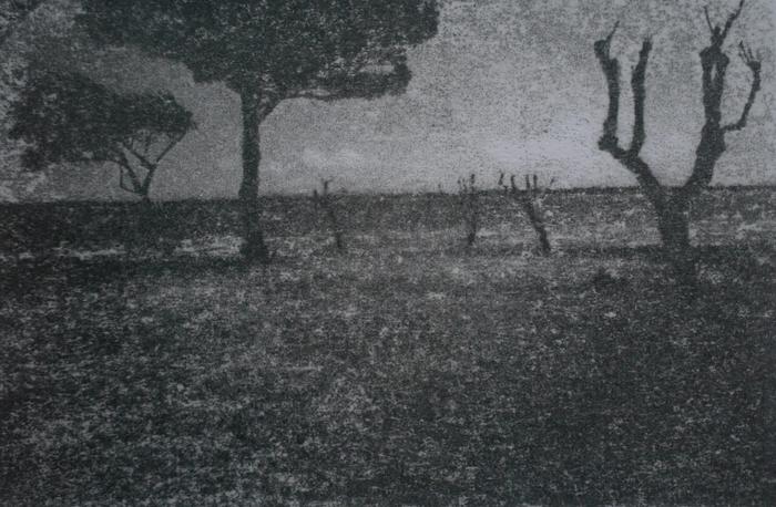 SV-AS30 ImageData