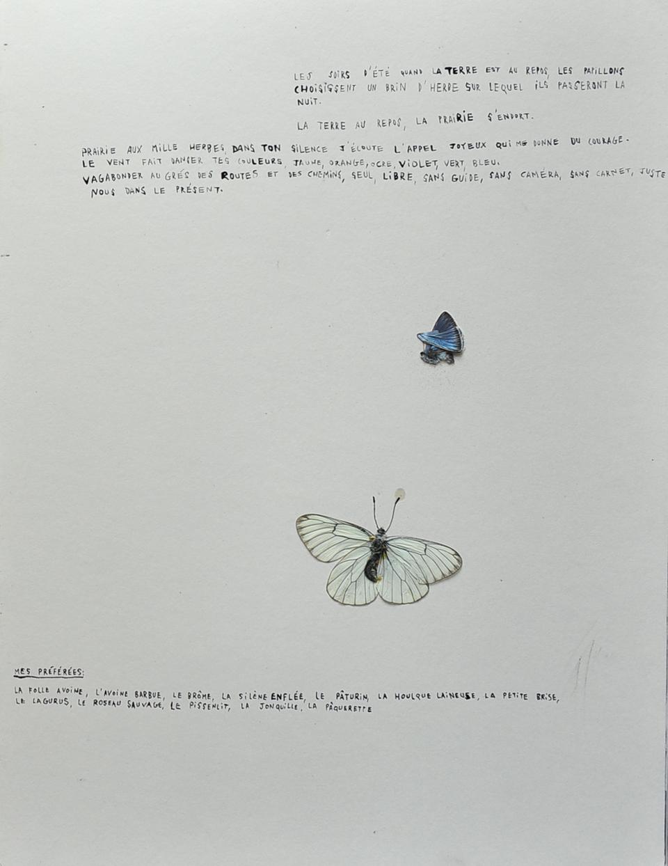 pinceau (18)