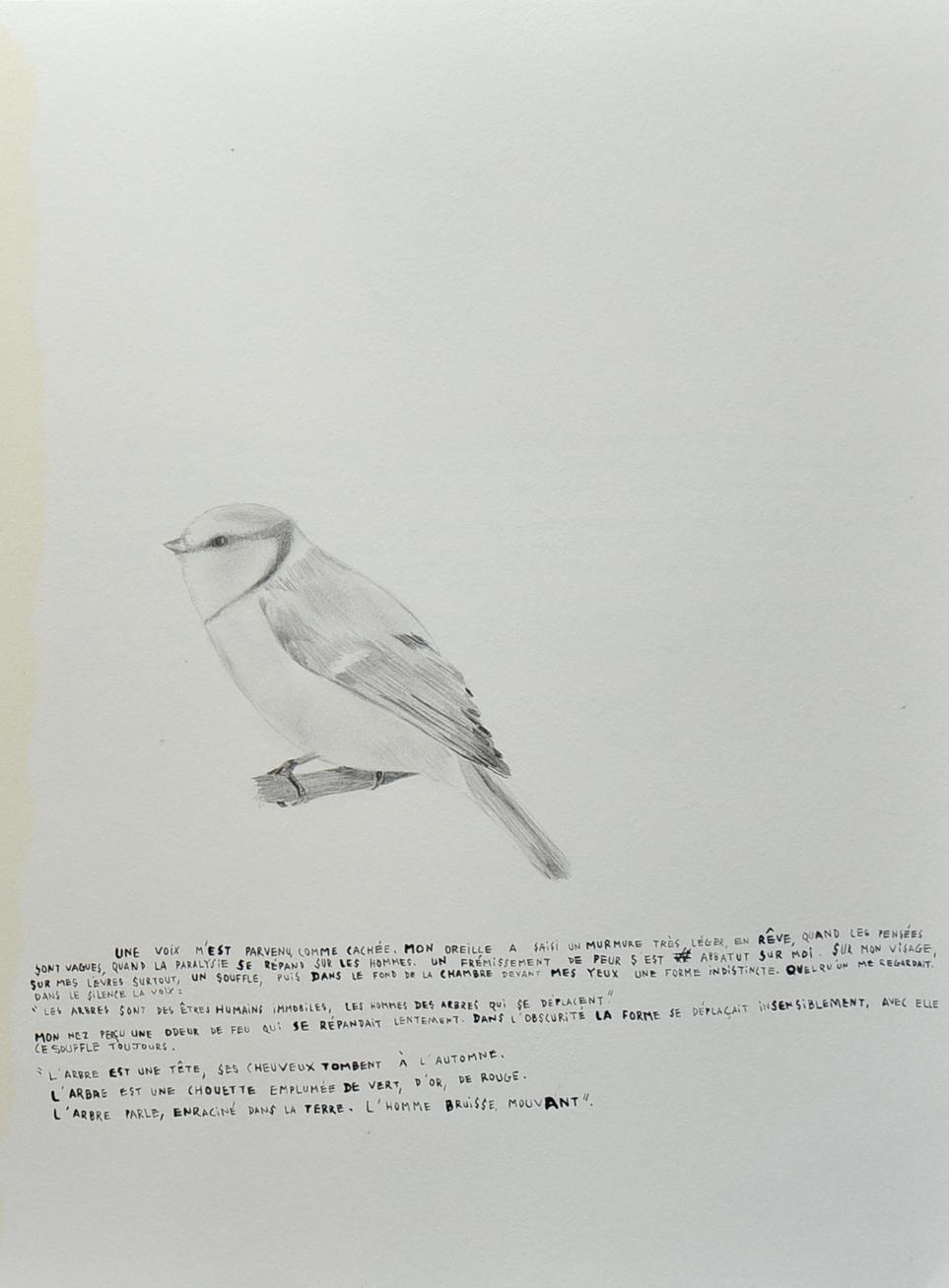 pinceau (7)