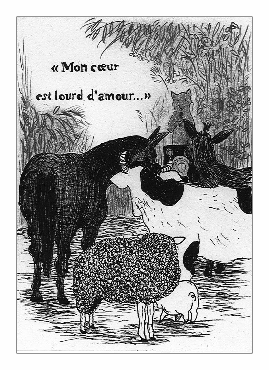 l'amour et le renard - aymeric hainaux - 2014 - 03