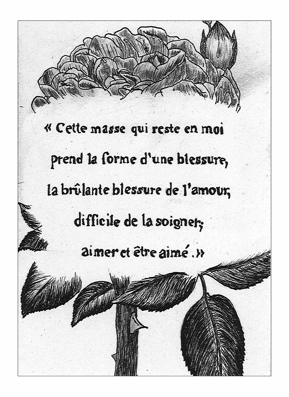 l'amour et le renard - aymeric hainaux - 2014 - 05