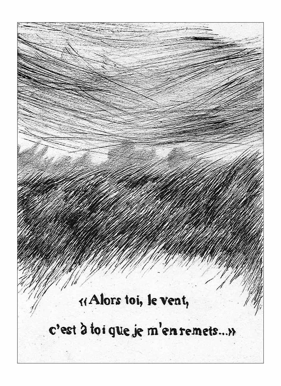 l'amour et le renard - aymeric hainaux - 2014 - 06
