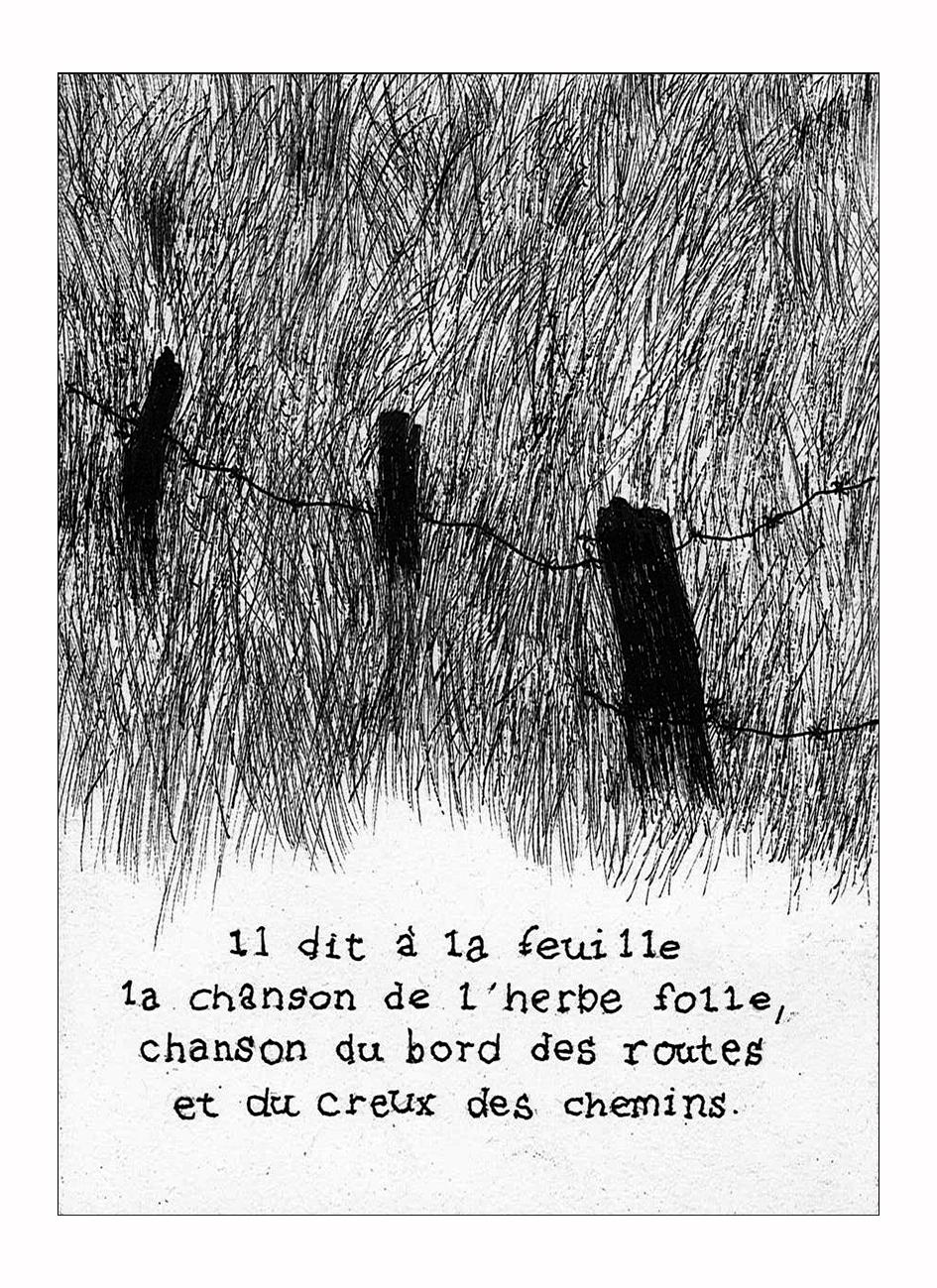 le vent et la poule - aymeric hainaux - 2014 - 03